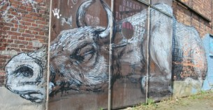 Belgian town in process of being knocked down for 15 years becomes a living street art gallery